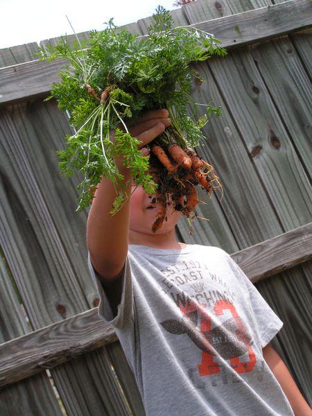 Aug 20 mario's first garden (4)