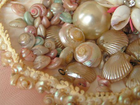 Shells13