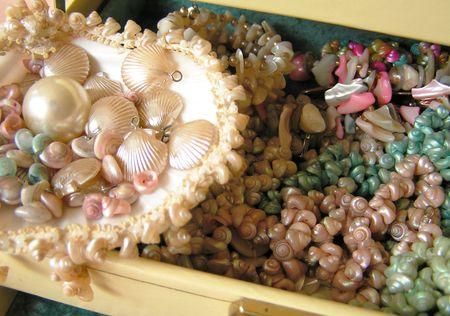 Shells10