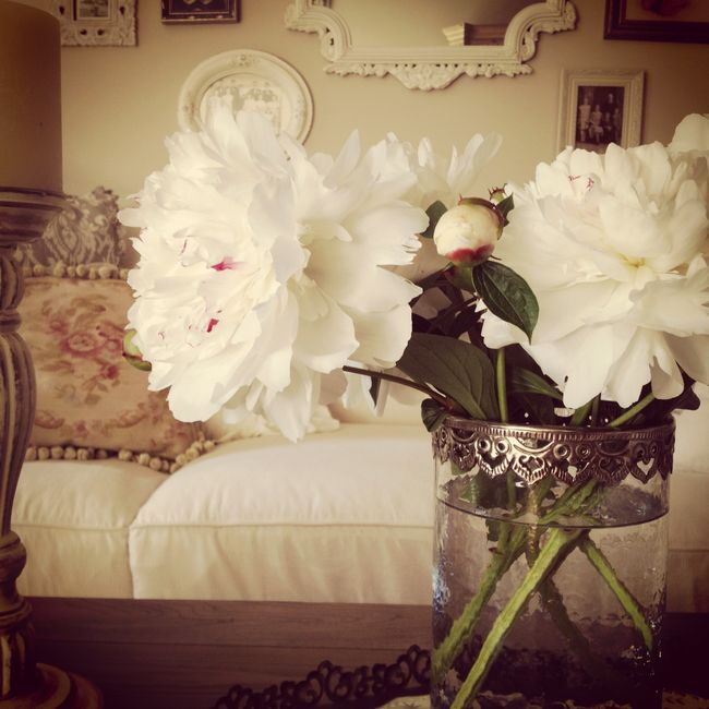 Family room peonies
