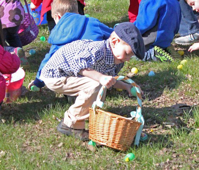Sammy gathering eggs