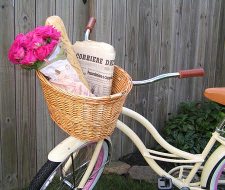 New_bike_2