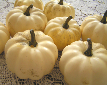 Naked_gourds